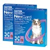 NexGard Spectra Chewables For Large Dogs Purple 15.1-30kg 12 Pack