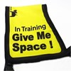 "Black Dog ""Give Me Space"" Awareness Vest for Dogs - Large"