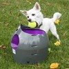 Petsafe Automatic Ball Launcher Dog Toy
