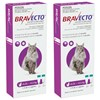 Bravecto Spot-On for Large Cats 6.25-12.5kg - Purple (12 Months)